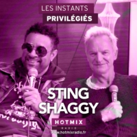 Logo of the podcast STING ET SHAGGY interview dans Les Instants Privilégiés Hotmixradio.