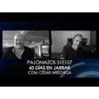 Logo du podcast Palomazos S1E107 - 45 Días en Jarbar