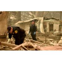 Logo du podcast Incendie en Californie : seuls quatre corps identifiés parmi les 42 victimes