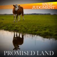 Logo of the podcast The Promised Land