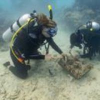 Logo of the podcast Degrees of Change: Coral Restoration. Nov 22 2019, Part 1