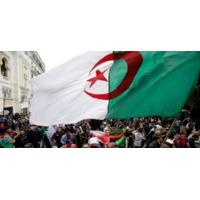 Logo of the podcast حصيلة السنة: عام الحراك في الجزائر