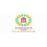 Logo of the podcast 2016 : L'année de la COP 22!