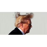 Logo du podcast Donald Trump a-t-il une pensée économique cohérente ?