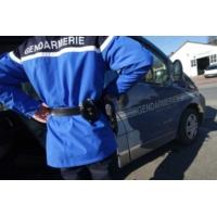 Logo du podcast Rhône : totalement ivres, deux hommes saccagent la mauvaise maison