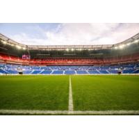 Logo of the podcast Euro 2016 : cette pelouse ultra-résistante équipe la moitié des terrains