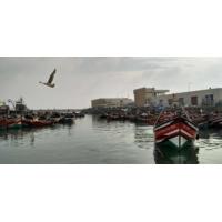Logo du podcast Comment profiter durablement des richesses maritimes ?