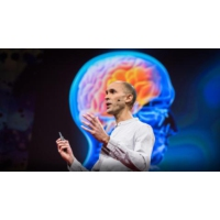 Logo of the podcast Your brain hallucinates your conscious reality | Anil Seth