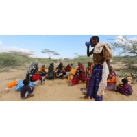 Logo du podcast Crise alimentaire en Afrique, comment répondre à l'urgence ?
