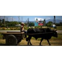 Logo du podcast Comment va l'économie de Cuba ?
