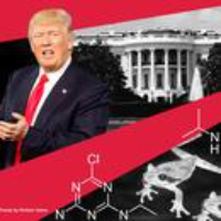 Logo of the podcast Trump, the Ex-Lobbyist and 'Chemically Castrated' Frogs