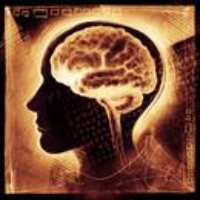 Logo of the podcast Episode 7: This Is Your Brain on Politics