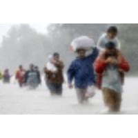 Logo du podcast After Harvey, hundreds find refuge in Houston-area mosques