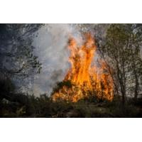 Logo du podcast Le journal RTL du 25 juillet 2017 : le Sud-Est et la Corse luttent contre les incendies