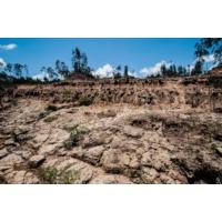 Logo of the podcast Reporterre sur France Inter: les sols du monde sont en danger - et donc l'alimentation