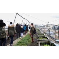Logo of the podcast Quand des collégiens découvrent un potager sur un toit de Paris