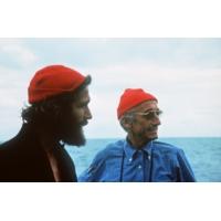 """Logo of the podcast La petite-fille du commandant Cousteau s'inquiète de """"l'inconscience de l'être humain"""""""