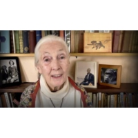Logo of the podcast Every day you live, you impact the planet | Jane Goodall