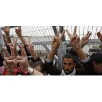 Logo of the podcast ما هى أوضاع الأسرى الفلسطينيين داخل سجون الاحتلال الإسرائيلي؟