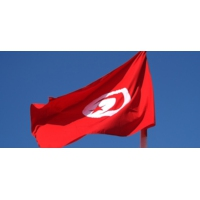 Logo du podcast Tunisia 2020 : l'avenir de la Tunisie entre leurs mains