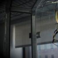 Logo of the podcast Spiders, Quantum Supremacy, Missouri Runoff. Oct 25, 2019, Part 1