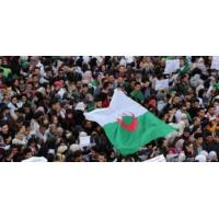 Logo of the podcast Algérie, système en bout de course ?