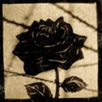 Logo of the podcast The Black Rose