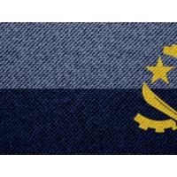 Logo of the podcast Comissão Política #48: A política da paixão em Angola