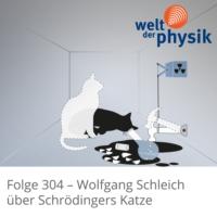 Logo of the podcast Folge 304 – Schrödingers Katze
