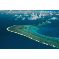 Logo of the podcast Reporterre sur France Inter: la grande barrière de corail en péril mortel à cause du changement cl…