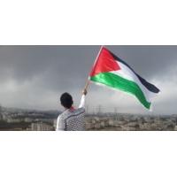 Logo du podcast Un musée pour la Palestine.