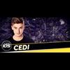 Logo de l'animateur Cedi
