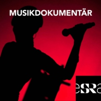 Logo of the podcast Musikdokumentär