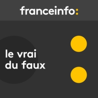 "Logo of the podcast Le vrai du faux. ""La moitié de l'immigration liée au regroupement familial"" ?"
