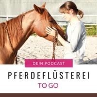 Logo of the podcast Pferdeflüsterei TO GO! Der Podcast für Pferdemenschen mit Herz