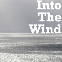 Logo du podcast Into The Wind