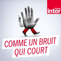 Logo of the podcast Comme un bruit qui court