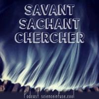 Logo of the podcast Savant Sachant Chercher