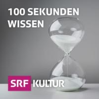 Logo du podcast 100 Sekunden Wissen