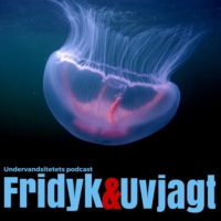 Logo du podcast Undervandsjagt & fridykning - Uvpodcast.