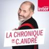 Logo du podcast La chronique de Christophe   André