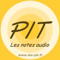 Logo du podcast Les PIT - Notes Audio