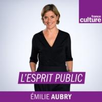 Logo du podcast L'esprit public