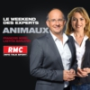 Logo du podcast Le weekend des experts : Vos animaux