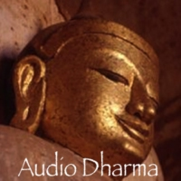 Logo of the podcast Audio Dharma