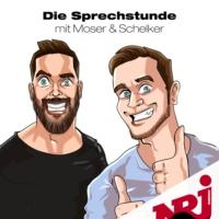 Logo of the podcast Die Sprechstunde – mit Moser & Schelker