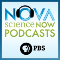 Logo du podcast NOVA Minute: The Language of Science