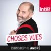 Logo du podcast France Inter - Choses vues : Christophe André