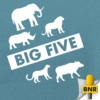 Logo of the podcast BNR's Big Five  | BNR
