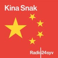 Logo du podcast Kina Snak